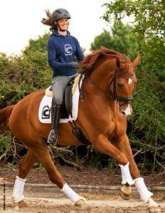 Vårnytt Cavallo Ryttare och Häst Flyinge
