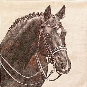 Kudde med dressyr häst